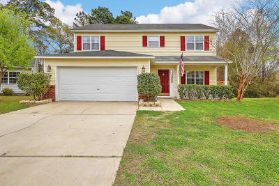 North Charleston Single Family Home For Sale: 7851 Long Shadow Lane