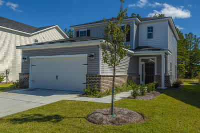 Summerville Single Family Home For Sale: 393 Sanctuary Park Drive