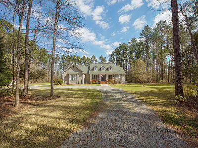 Summerville Single Family Home For Sale: 232 Berkeley Pointe Court