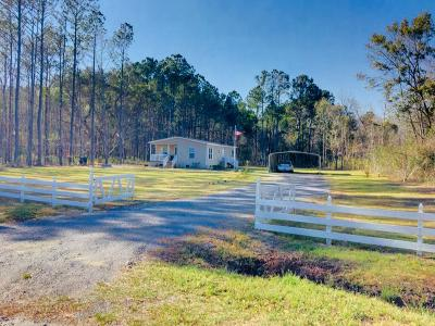 Awendaw Single Family Home For Sale: 6222 Maxville Road