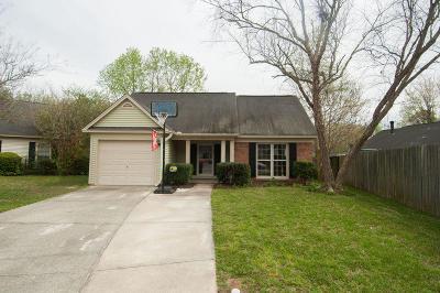 Goose Creek Single Family Home For Sale: 128 Severn Street