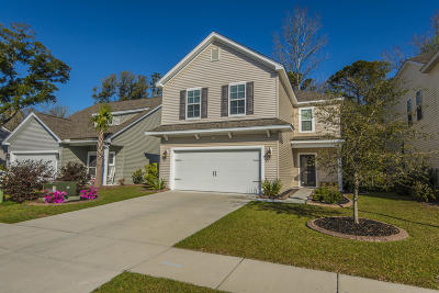Awendaw Single Family Home For Sale: 3844 Tupelo Branch