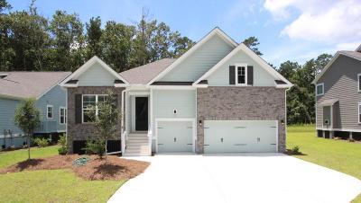 Charleston Single Family Home For Sale: 1430 Brockenfelt Drive