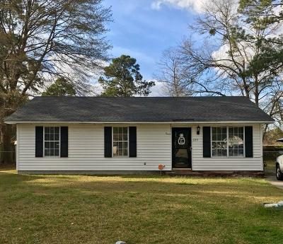 Summerville Single Family Home For Sale: 325 Wilson Drive