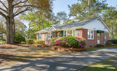 Charleston Single Family Home For Sale: 239 Stinson Drive