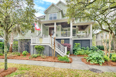 Charleston Single Family Home For Sale: 1123 Oak Overhang Street