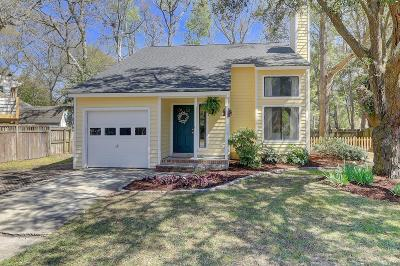 Mount Pleasant Single Family Home For Sale: 1416 School House Road