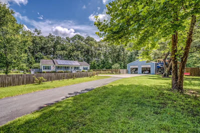 Charleston County Single Family Home For Sale: 8884 Parkers Ferry Road