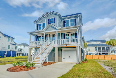 Charleston Single Family Home For Sale: 317 Coki Amalie Court
