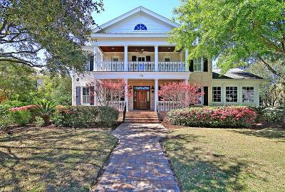 Mount Pleasant Single Family Home For Sale: 779 Navigators Run