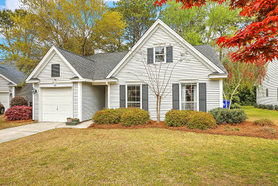 Mount Pleasant Single Family Home For Sale: 479 Old Carolina Court