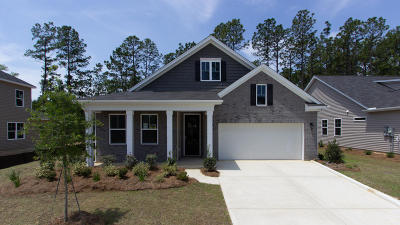Summerville Single Family Home For Sale: 708 Kilarney Road