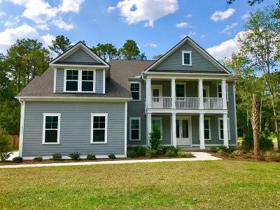 Summerville Single Family Home For Sale: 5553 Alpine Drive