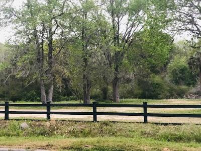Residential Lots & Land For Sale: 1352 Porchers Bluff Road