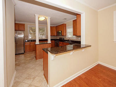 Mount Pleasant Single Family Home For Sale: 739 Spark Street