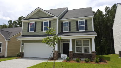 Moncks Corner Single Family Home For Sale: 129 Sugeree Drive