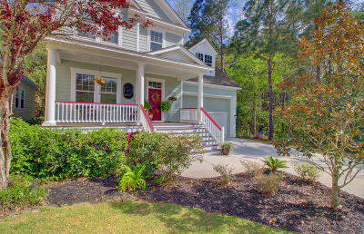 Dorchester County Single Family Home For Sale: 151 Ashley Bluffs Road
