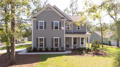 Summerville Single Family Home For Sale: 3008 Rampart Road