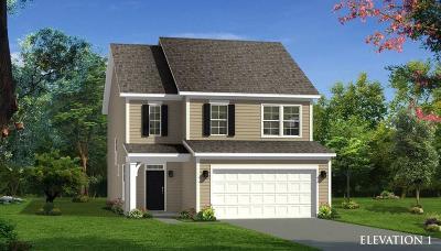 Moncks Corner Single Family Home For Sale: 110 Sugeree Drive