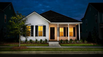 Summerville Single Family Home For Sale: 404 Bright Leaf Loop