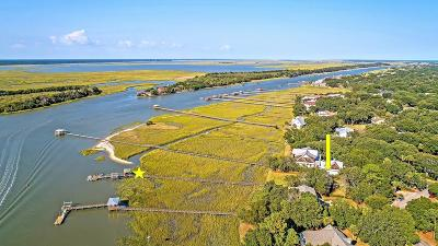 Isle Of Palms Single Family Home For Sale: 1903 Waterway Boulevard