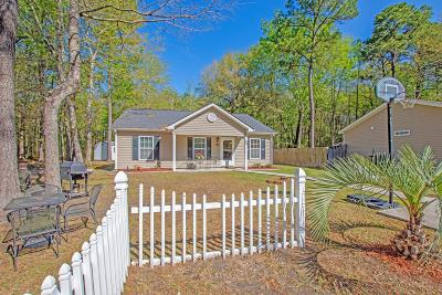 Berkeley County, Charleston County, Dorchester County Single Family Home For Sale: 23 Craig Court