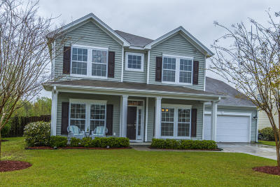 Summerville Single Family Home For Sale: 10002 Begovich Court
