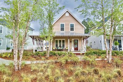 Summerville Single Family Home For Sale: 308 Scholar Way