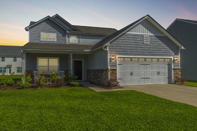 Moncks Corner Single Family Home For Sale: 136 Waccamaw Circle