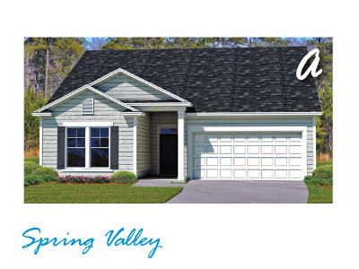 Summerville SC Single Family Home Contingent: $250,060
