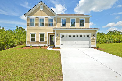 Johns Island Single Family Home For Sale: 3425 Great Egret Drive