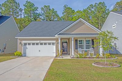 Berkeley County, Charleston County, Dorchester County Single Family Home For Sale: 176 Blackwater Way