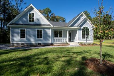 Johns Island Single Family Home For Sale: 3308 Olivia Marie Lane