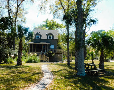 Edisto Island Single Family Home For Sale: 8912 Palmetto Road