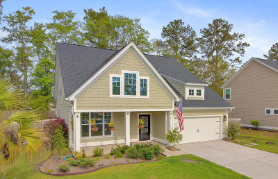 Dorchester County Single Family Home For Sale: 109 Long Needle Lane