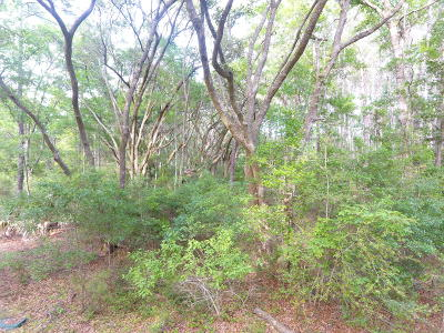 Edisto Island SC Residential Lots & Land For Sale: $139,000