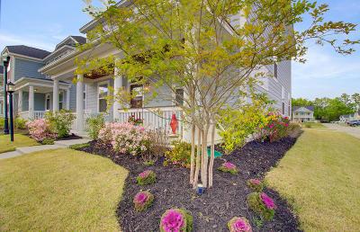 Dorchester County Single Family Home For Sale: 72 Crossandra Avenue