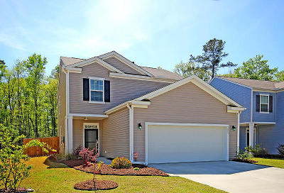 Ladson Single Family Home For Sale: 9805 Seed Street