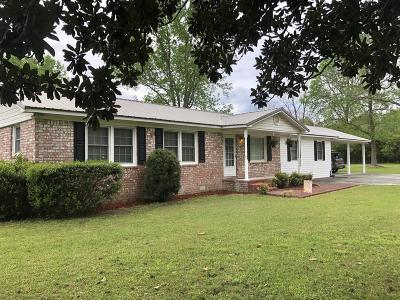 Berkeley County, Charleston County, Dorchester County Single Family Home For Sale: 978 Independent School Road