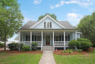 Charleston Single Family Home For Sale: 1058 Blakeway Street