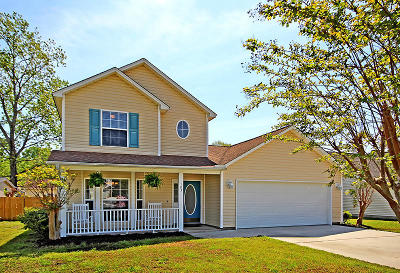 Berkeley County, Charleston County, Dorchester County Single Family Home For Sale: 103 Egret Lane