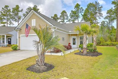 Berkeley County, Charleston County, Dorchester County Single Family Home For Sale: 804 Starboard Court