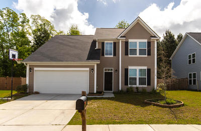 Berkeley County Single Family Home For Sale: 450 Gianna Lane