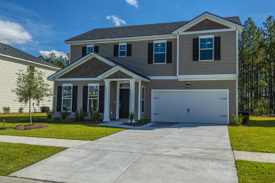 Berkeley County Single Family Home For Sale: 397 Sanctuary Park Drive