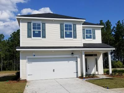 Berkeley County Single Family Home For Sale: 399 Sanctuary Park Drive