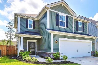 Summerville Single Family Home Contingent: 191 Basket Grass Lane