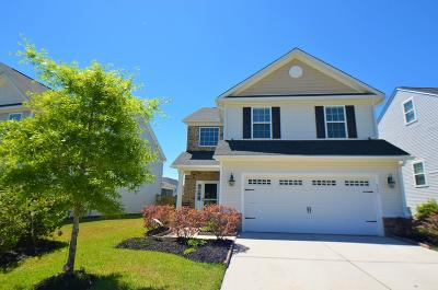 Berkeley County Single Family Home For Sale: 523 Crossland Drive