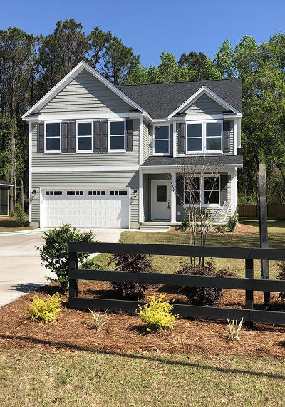 Charleston County Single Family Home Contingent: 1516 Grimball Ext Road