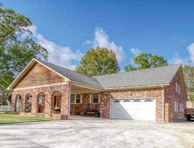 Single Family Home For Sale: 1098 Stonehenge Drive