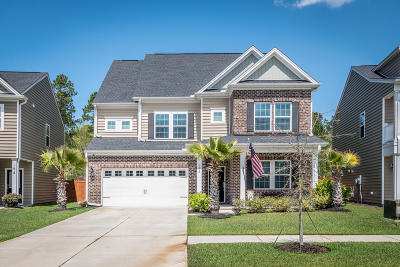 Berkeley County Single Family Home For Sale: 192 Lindera Preserve Boulevard